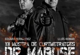 Cartel 2013. Diseño: David Villòria y Cristina Raso